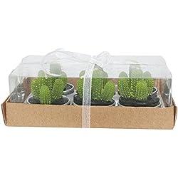 Cdet 6X Velas de Cactus Plantas suculentas Velas de Tealight Mini sin humo para la decoración del hogar,Bola de hadas,Cactus