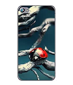 PrintVisa Designer Back Case Cover for Micromax Canvas Fire 4 A107 (Environment Ladybird Sunshine Harmony Wildlife Biology Beautiful Blurred)