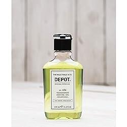 Depot No 406 transparente...