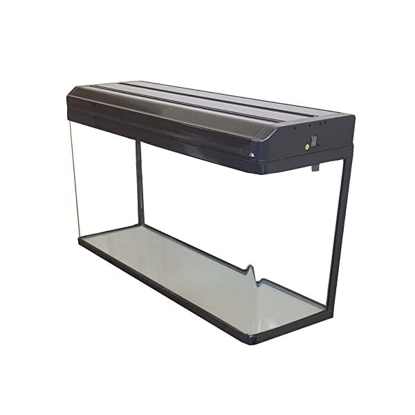 Boyu Aquarium Fish Tanks with LED Lighting & Hood Filtration (100cm / 150L, White)