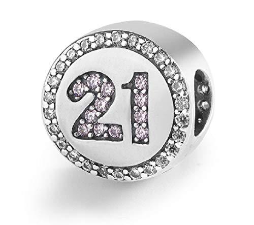 Featherwish - ciondolo rotondo in argento sterling 925 con zirconi cubici trasparenti e rosa, adatto per braccialetti o collane pandora e argento, colore: silver, cod. na