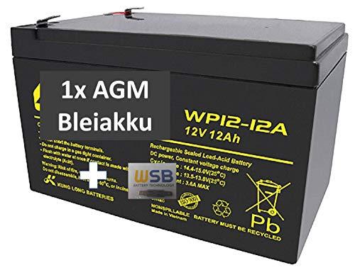 Akku 12V 12Ah Batterie Blei Gel E-Bike E Scooter Rollstuhl USV Solar Pedelec Fahrrad 10Ah 12Ah 12V ZYKLENFEST