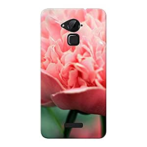 Mobile Back Cover For CoolPad Note 3 (Printed Designer Case)