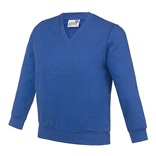 AWDis Academy Childrens/Kids Junior V Neck School Jumper/Sweatshirt