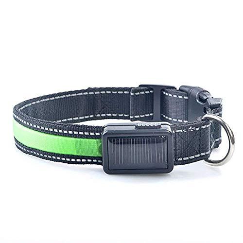 EgBert Yani Solar Power USB Charging Electronic Led Flashing Light Safe Nylon Dog Pet Collar Für Verschiedene Hunde - Green M