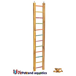 "LB-30 Wooden Ladder For Parrots, 36"" 7"