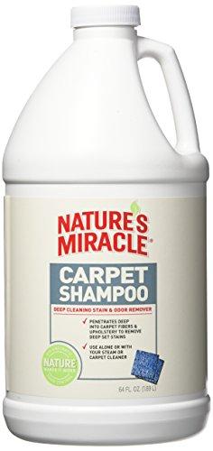 Nature 's Miracle Tiefe Reinigung Pet Flecken und Geruch Teppich Shampoo 64oz (1/2Liter) -