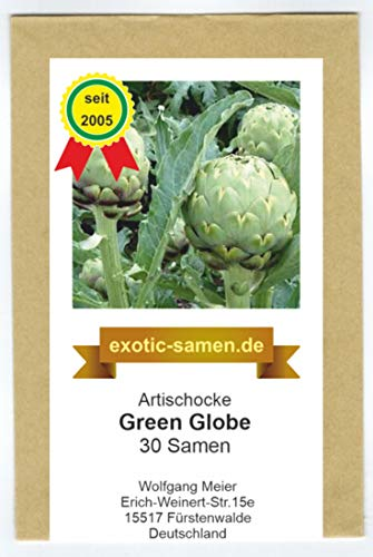 Artischocke - Green Globe - Große Köpfe - Zier- u. Arzneipflanze - 30 Samen