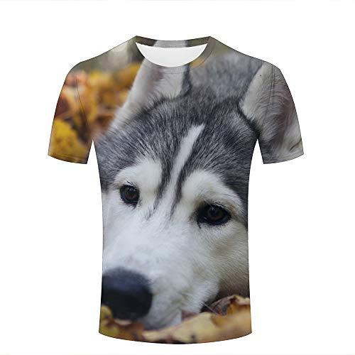 Men Women Casual Design 3D Printed Autumn Leaves and Cute Animal Puppy Short Sleeve T Shirts Tees XXXL (Volcom-zeichen)