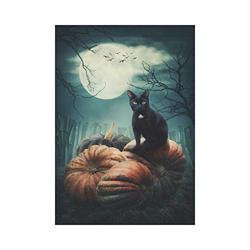 een schwarz Katze auf einem Kürbis Polyester Garten Flagge Haus Banner 30,5 x 45,7 cm, dark Tree Full Moon Fahne Deko für Party Yard Home Outdoor Decor, Polyester, multi, 28x40 (Halloween-katze Auf Kürbis)