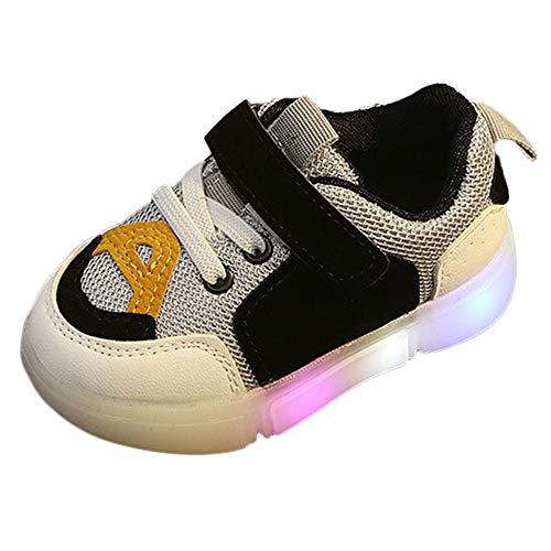 ❤️ Zapatos Deportivos Luminosos para niños, bebés niños pequeños Chicas niños Lightning LED Zapatos Deportivos Luminosos Zapatillas de Deporte Absolute