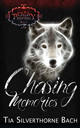 Chasing Memories (Tala Prophecy, Band 1)