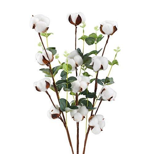 Huaesin 3pz fiori secchi cotone con foglie di eucalipto fiori artificiali da interno finti fiori essiccati per decorazioni casa ufficio balcone vaso fai da te interno esterno