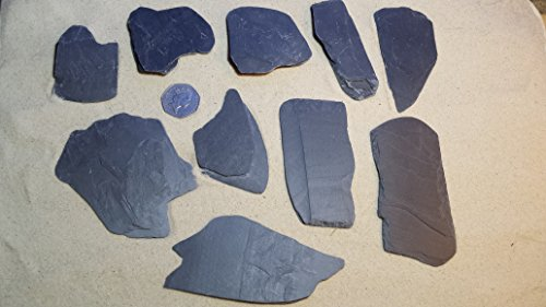 fennstones-flat-loose-real-natural-slate-furnishing-stone-rock-for-aquarium-fish-tank-vivarium-repti