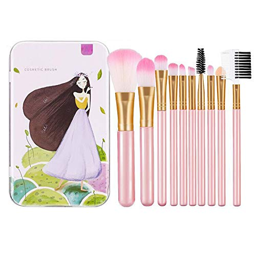 ZQGehu Rosa 10 Teile/Satz Mini Make-Up Pinsel Set Kosmetik Kit Bilden Kit Mit Metallbox