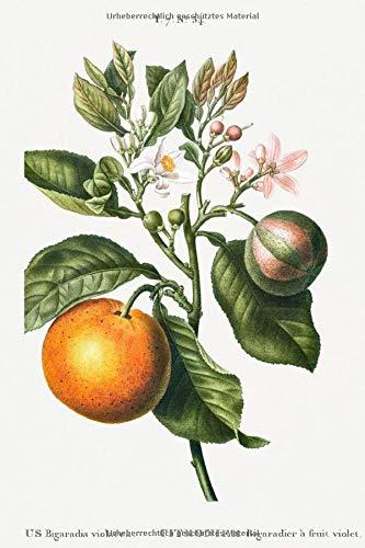 """Designer Notizheft: liniert mit Motiv """"Bitterorange (Citrus Bigaradia violacea)"""" von Pierre-Joseph Redouté, Notebook, Schreibheft etwa A5 (15,3 x 22,9 ... stilvolle Geschenkidee für Gartenliebhaber"""