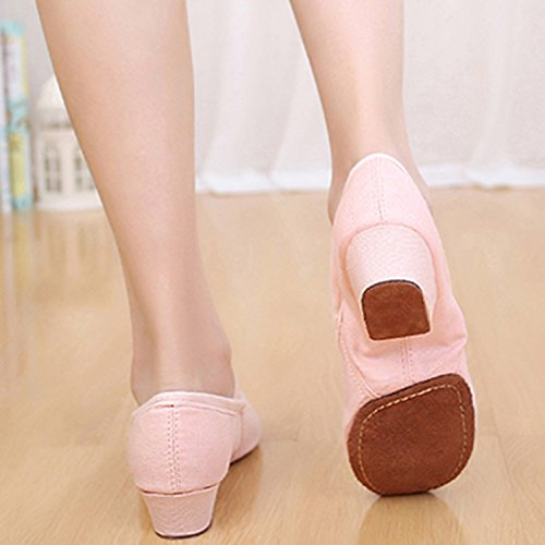Oasap Women's Round Toe Chunky Heels Canvas Dance Shoes Pink