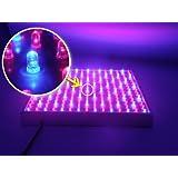 FUNLAVIE Lampe de Croissance LED pour Plantes 14W 225 LED