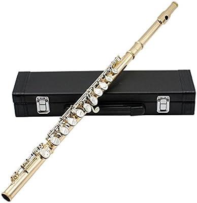 XIE@Imitación flauta de oro C melodía de flauta equipado con varilla de limpieza, ropa, accesorios de grasa y un destornillador caja dedicada