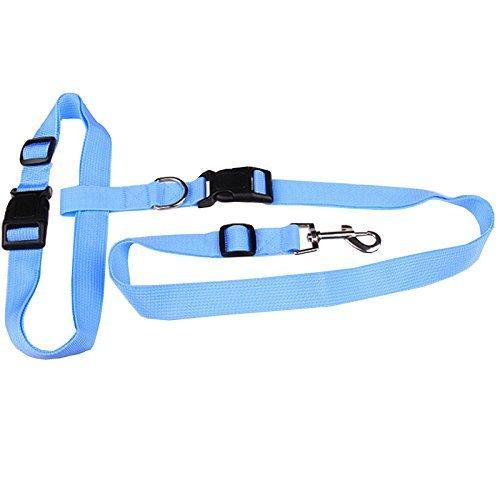 huihuger Praktisches verstellbar Haustier Hund Leine führen für Laufen Walking Wandern Joggen (blau) (Leine Führen Nylon)