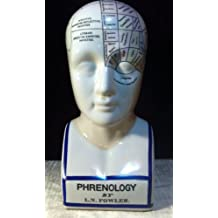 Frenología cabeza frenológica porcelana Busto regalo neurología cráneo