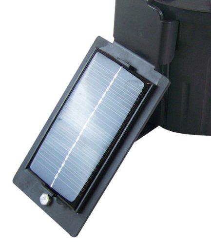 Berger + Schrã¶Ter berger + panel solar Schröter para wildfutter automático digital, negro, 31.256,