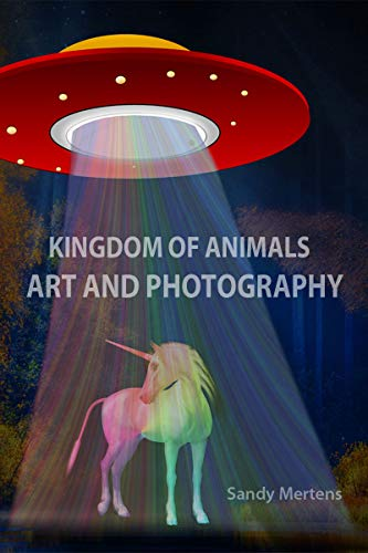 Kingdom of Animals Art and Photography: Animal Posters by Sandy Mertens (English Edition) - Bald Eagle Artwork