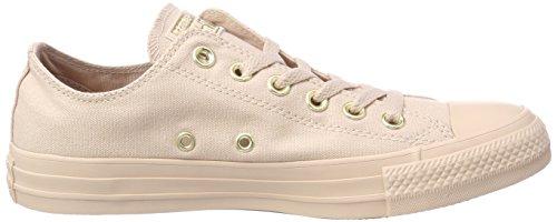 Converse Ctas Ox Particle Beige, Sneaker Unisex – Adulto Elfenbein (Particle Beige/Particle Beige)