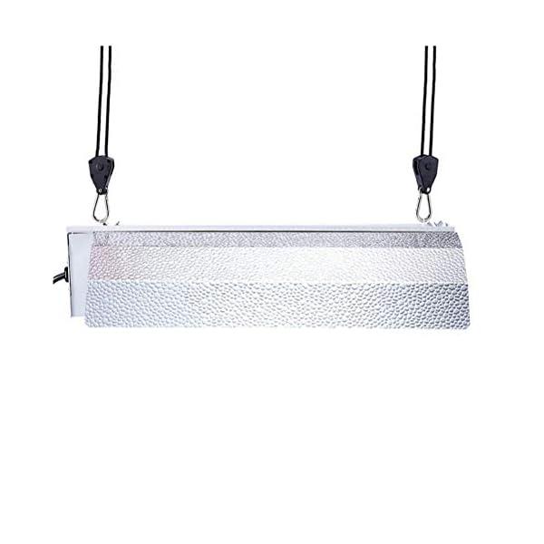 Kawosh Cuerda de 2 Piezas Cuerda con Gancho Rollos fáciles para lámparas Reflectores Ventiladores Sopladores Lámpara de… 4