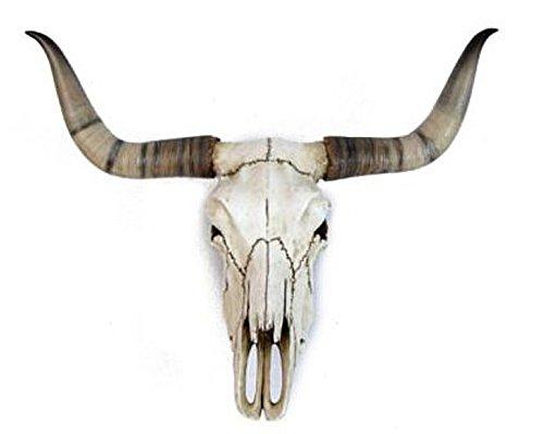 ars-bavaria-crane-de-taureau-decoratif-wicca-country-western-metal-larp