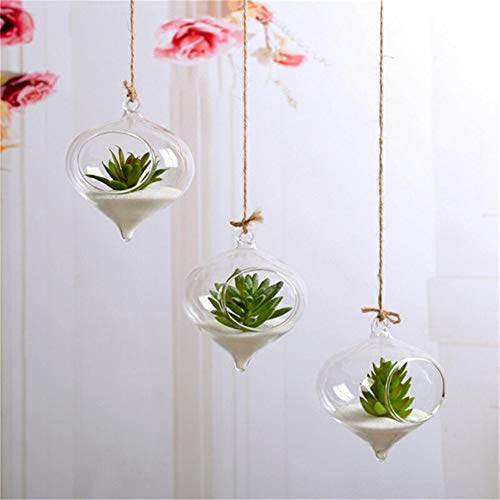 yushuli Hausgarten Klarglas Blume Hängen Vase Pflanzer Terrarium Container Aquarium Terrarium Aquarium Container Wohnkultur