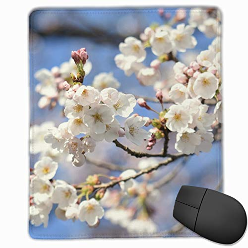 Natural Landscape Plant Cherry-1675 Non-Slip Rectangle Rubber Mouse Pad 30x25CM