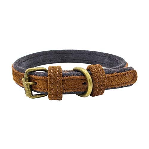 DOGZI Hundehalsband Leder Katze Halsband Verstellbare Hundehalsband, Einstellbares Doppel Schicht Matt Polnisch Hund aus Rindsleder Welpen Hundehalsbänder