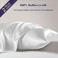 Silk Pillowcase for Hair and Skin – 100% Organic Pure Mulberry Worm Silk – Hidden Zipper – Premium, Soft, Allergen Resistant - Luxurious 25 Momme Silk Queen 2 Pack White Hyde Lane