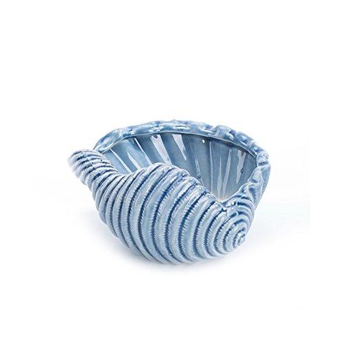 Chinashow 4 Zoll schöne Muschel blumentöpfe mit Loch sukkulente töpfe Mini - Desktop - kreative Dekorationen blau Keramik zu Hause Ornament (Die 4 Keramik-töpfe Pflanzen Zoll Für)