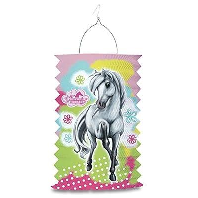 Zuglaterne Umzugslaterne Kinderlaterne Charming Horses Party Lampion Party Laterne 28 cm von HC-Handel® - Du und dein Garten