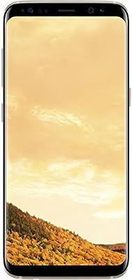 Samsung Galaxy S8Dual SIM 64GB 4G Smartphone entriegelt