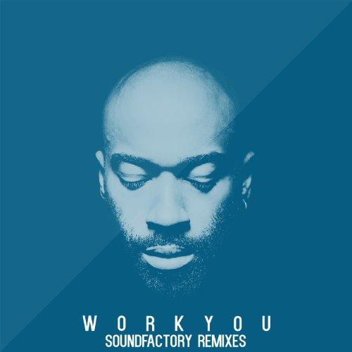 Work You (feat. Rigael Damar) [SoundFactory Remixes] -