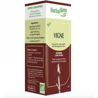 Herbalgem Vigne vierge macérât 15ml