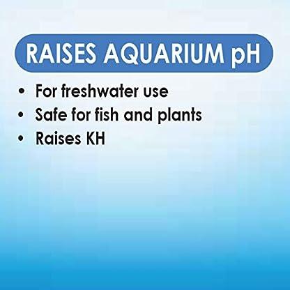 API pH UP Freshwater Aquarium Water pH Raising Solution 16-Ounce Bottle 4