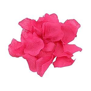 Shatchi 11617-ROSE-PETALS-DARK-PINK-200 200 - Confeti de pétalos de rosa para cumpleaños, aniversario, boda, bautizo, día de la madre, decoración de mesa, sala de estar