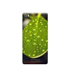 EPICCASE Premium Printed Back Case Cover With Full protection For Lava Iris X8 (Designer Case)