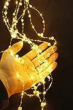 Arnusa LED Lichterbündel mit Perlen bestückt 125 LED'S Lichterkette Weihnachtsbeleuchtung