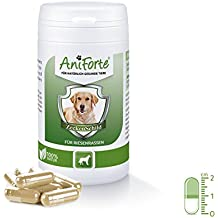 Pastillas AntiGarrapatas para Perros Gigantes (+50kg) - 60 cápsulas | Producto 100%