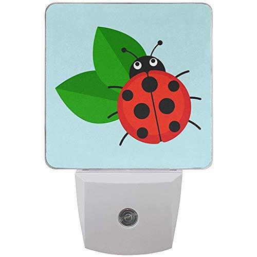 Satz von 2 Marienkäfer auf Blatt-Karikatur-Insekten-Käfer-flachem Art-Design