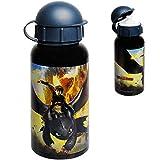 alles-meine.de GmbH Trinkflasche / Sportflasche -  Dragons - Drachenzähmen leicht gemacht  - 400 ml - auslaufsicher - aus Aluminium - Wasserflasche - für Kinder - Aluflasche 0,..