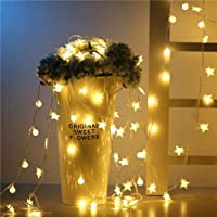 Warm light LeD Little Star String Lights power Operated /6M40LeDs Christmas Wedding Decoration Fairy Lights