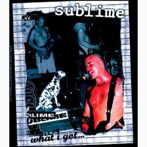 "Preisvergleich Produktbild SUBLIME What I Got, Officially Licensed Original Artwork, Premium Quality, 4"" Die-Cut Vinyl Sticker Aufkleber DECAL"
