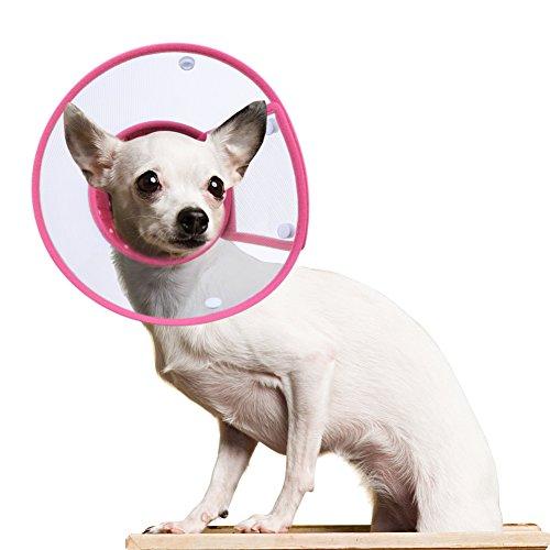 Hundehalsbänder Halskrausen Kegel, PETBABA Gepolstert Elisabethanisch Hunde Halsband für Welpen Kätzchen Rosa M -