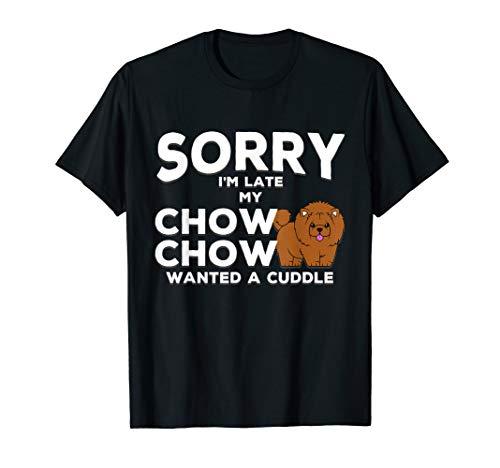 Cute Cuddle Chow Chow Hund ()
